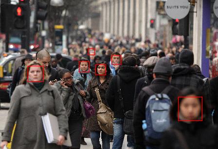 detection1